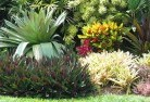 Ansons Bay Bali style landscaping 6old